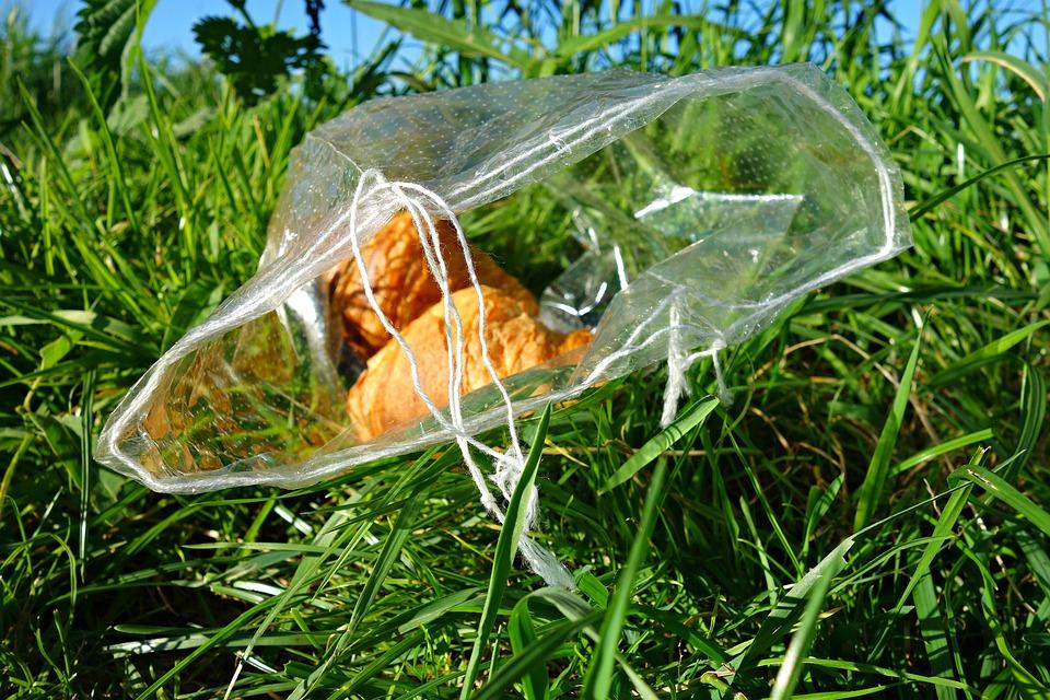 bag-1575702_960_720
